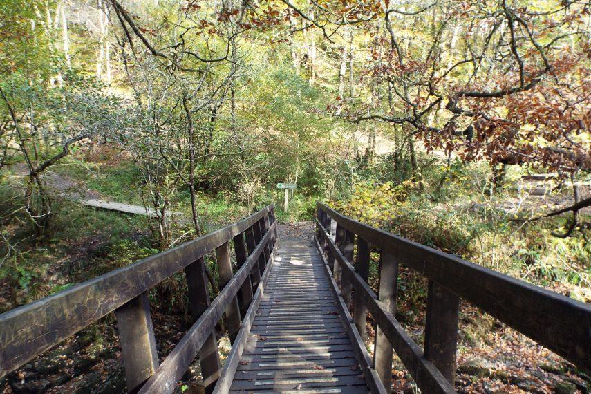 Elidir Trail