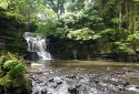 Neath Abbey Iron Works & Waterfalls