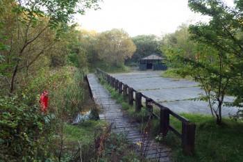 Ynys Dawela Nature park