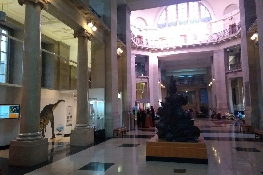 Cardiff Museum