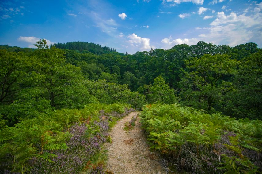 Four Waterfalls Trail